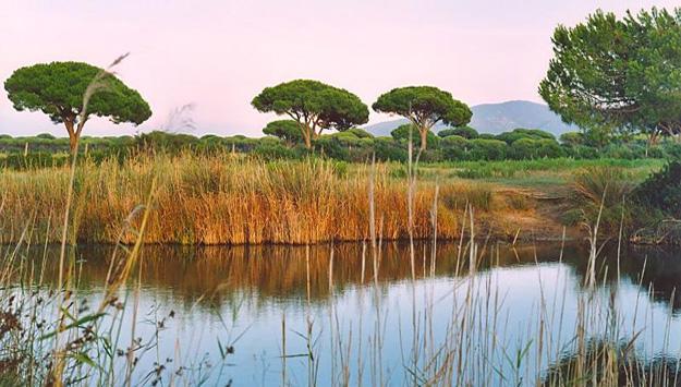 04-national-parc-della-maremma
